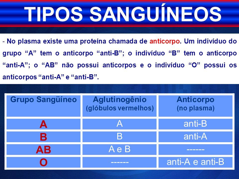 - No plasma existe uma proteína chamada de anticorpo. Um indivíduo do grupo A tem o anticorpo anti-B; o indivíduo B tem o anticorpo anti-A; o AB não p