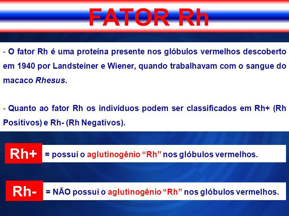 - O fator Rh é uma proteína presente nos glóbulos vermelhos descoberto em 1940 por Landsteiner e Wiener, quando trabalhavam com o sangue do macaco Rhe