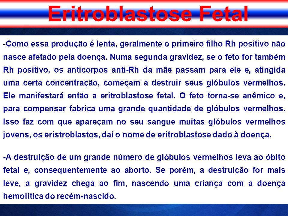 Eritroblastose Fetal -Como essa produção é lenta, geralmente o primeiro filho Rh positivo não nasce afetado pela doença. Numa segunda gravidez, se o f