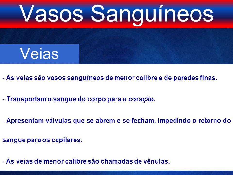 TIPOS SANGUÍNEOS = possui o aglutinogênio B nos glóbulos vermelhos.