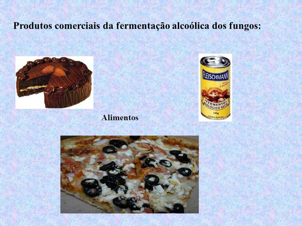 Produtos comerciais da fermentação alcoólica dos fungos: Alimentos
