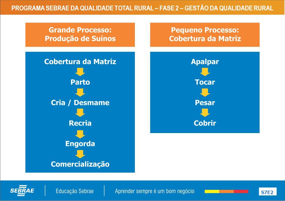 PROGRAMA SEBRAE DA QUALIDADE TOTAL RURAL – FASE 2 – GESTÃO DA QUALIDADE RURAL S8E2 QUALIDADE COMO PROCESSO