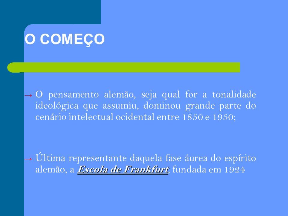 SÍNTESE: a teoria tinha como foco principal a tentativa de interpretar as relações sociais a fim de contextualizar os fenômenos que acontecem na sociedade.