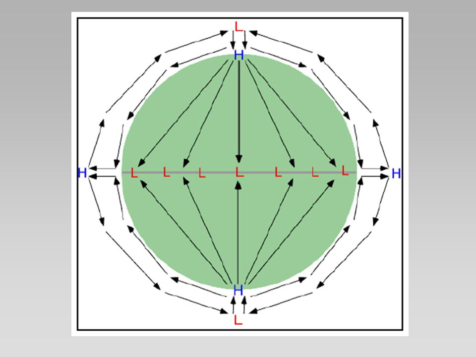 Noções básicas Modelo de célula única não é observado na prática o quê faltou considerar?