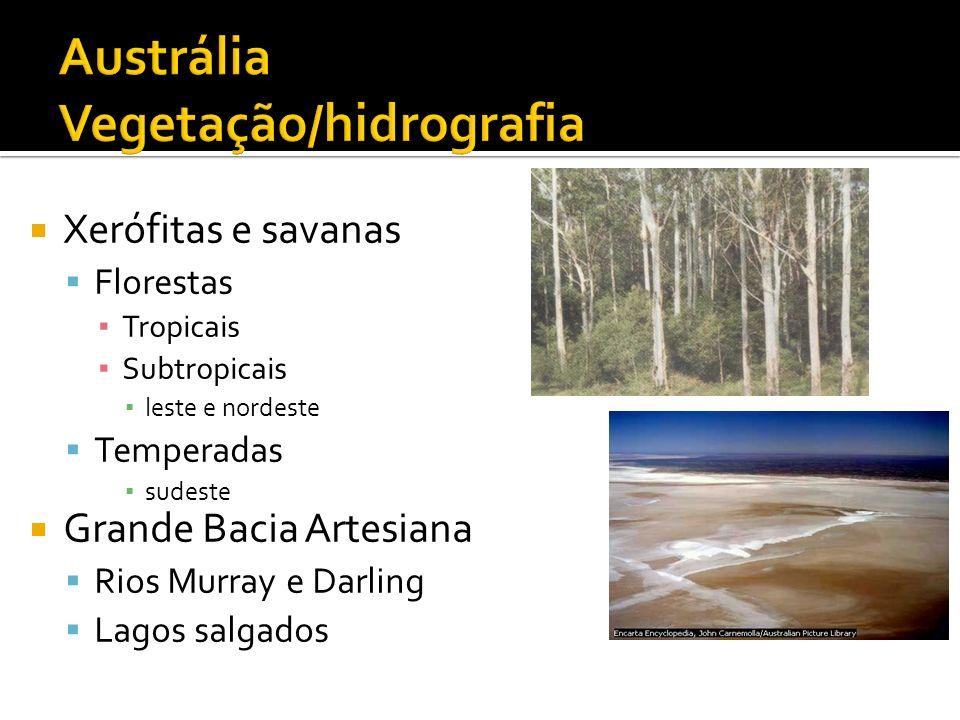Xerófitas e savanas Florestas Tropicais Subtropicais leste e nordeste Temperadas sudeste Grande Bacia Artesiana Rios Murray e Darling Lagos salgados