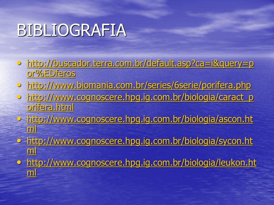 BIBLIOGRAFIA http://buscador.terra.com.br/default.asp?ca=i&query=p or%EDferos http://buscador.terra.com.br/default.asp?ca=i&query=p or%EDferos http://