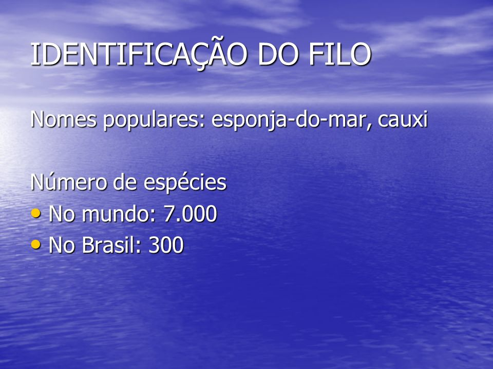 IDENTIFICAÇÃO DO FILO Nomes populares: esponja-do-mar, cauxi Número de espécies No mundo: 7.000 No Brasil: 300