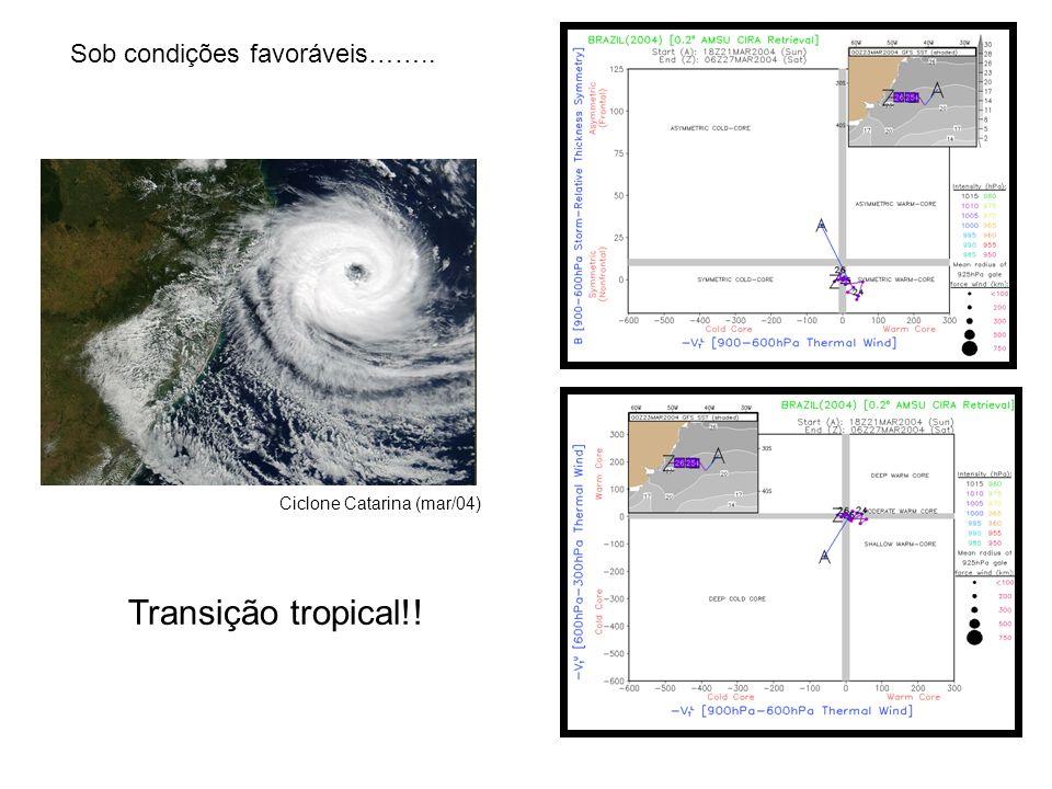 Sob condições favoráveis…….. Transição tropical!! Ciclone Catarina (mar/04)
