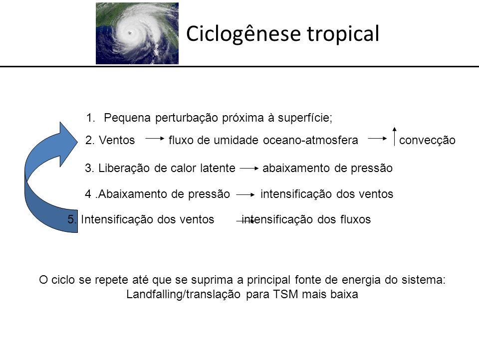 Ciclogênese tropical Condições necessárias (mas não suficientes!!) para a ciclogênese tropical: (Gray, 1968) - Perturbação ciclônica na baixa troposfera (precursora); - Alta energia térmica do oceano (TSM > 26 o C numa camada superior a 60 m); - Alta umidade relativa na baixa troposfera (instabilidade convectiva!)