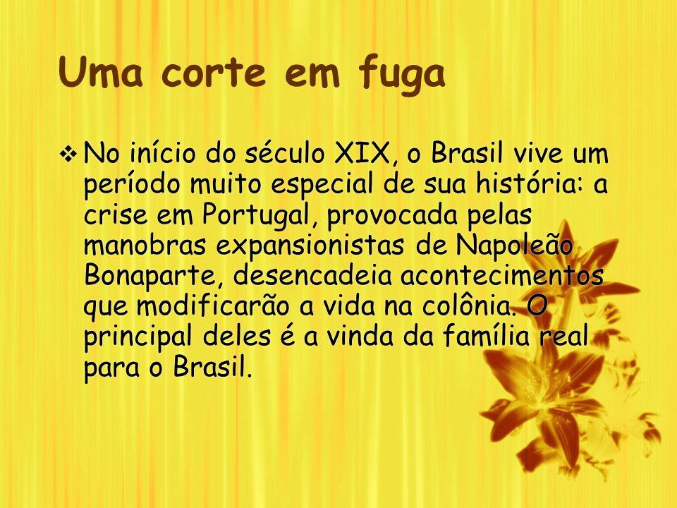 Uma corte em fuga No início do século XIX, o Brasil vive um período muito especial de sua história: a crise em Portugal, provocada pelas manobras expa