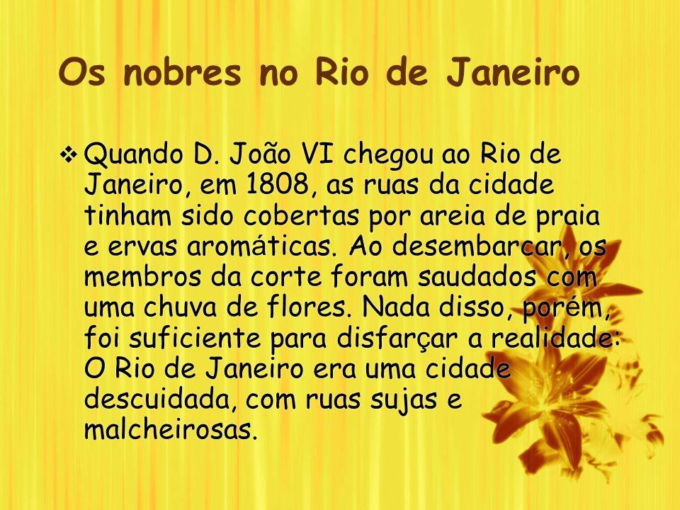 Os nobres no Rio de Janeiro Quando D. João VI chegou ao Rio de Janeiro, em 1808, as ruas da cidade tinham sido cobertas por areia de praia e ervas aro