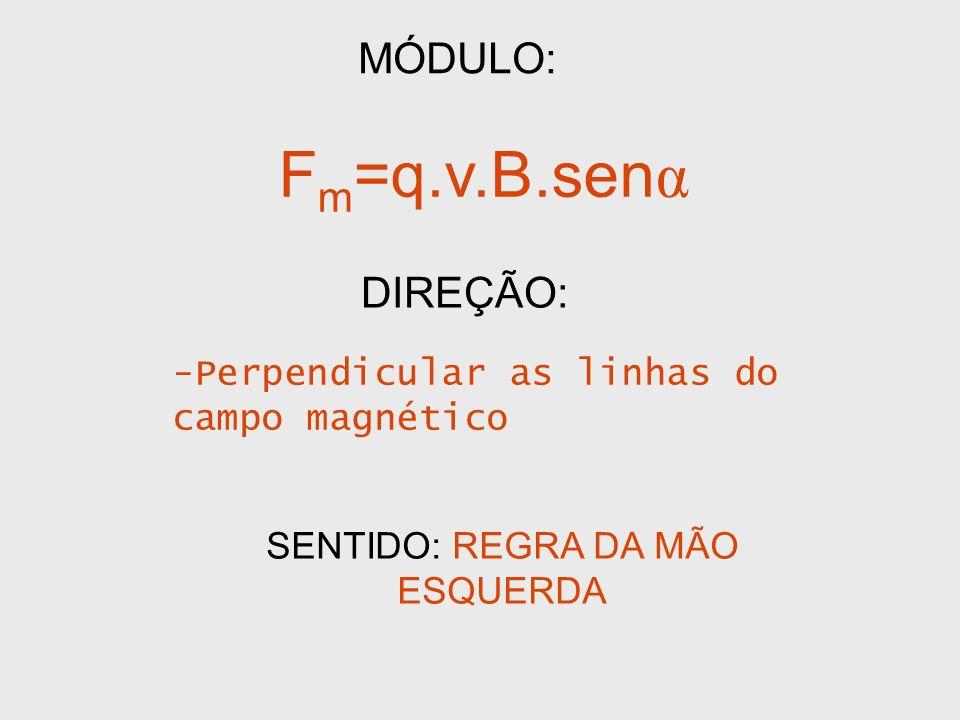 MÓDULO: F m =q.v.B.sen α DIREÇÃO: -Perpendicular as linhas do campo magnético SENTIDO: REGRA DA MÃO ESQUERDA
