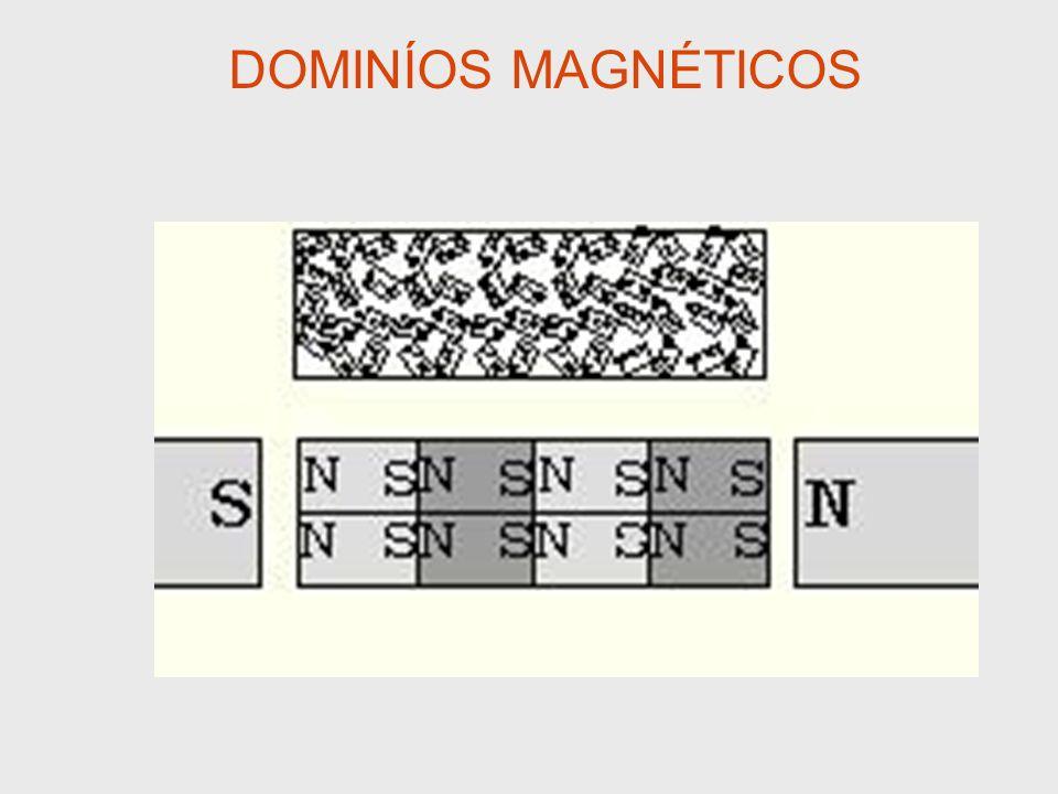 DOMINÍOS MAGNÉTICOS