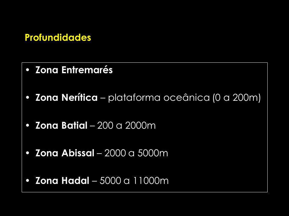 Profundidades Zona Entremarés Zona Nerítica – plataforma oceânica (0 a 200m) Zona Batial – 200 a 2000m Zona Abissal – 2000 a 5000m Zona Hadal – 5000 a 11000m