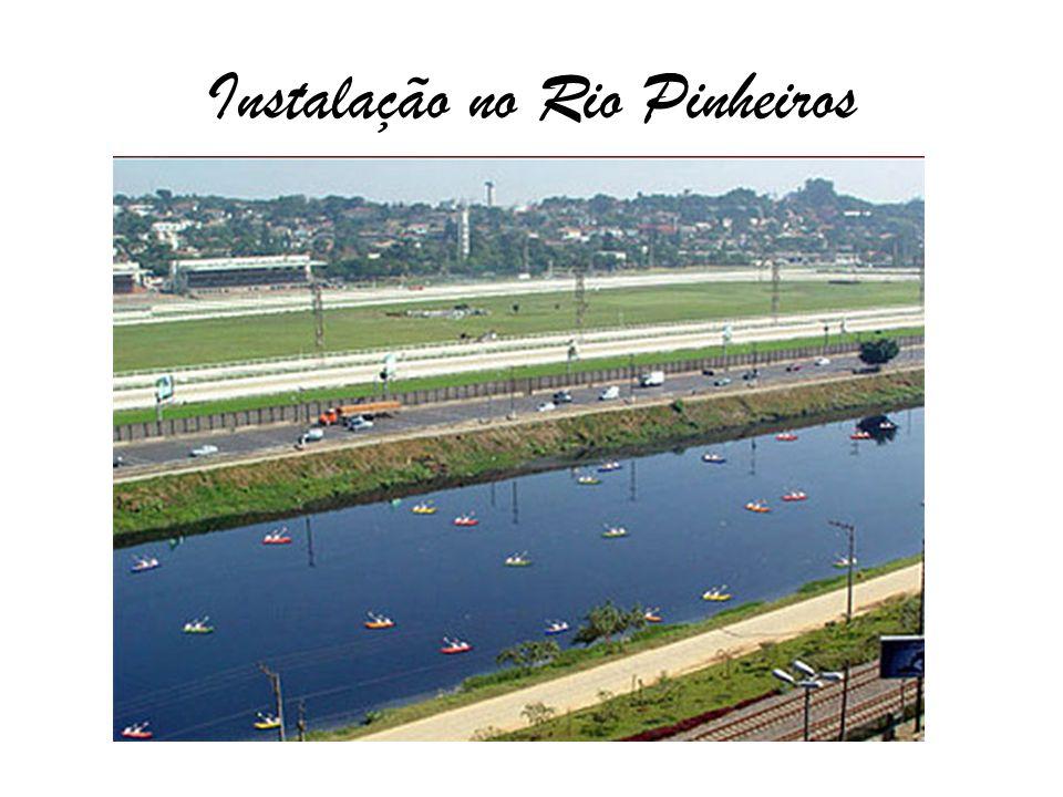 Instalação no Rio Pinheiros