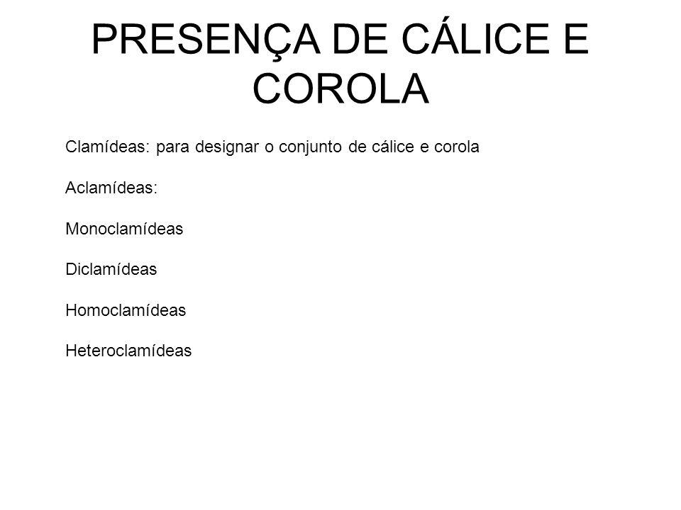 PRESENÇA DE CÁLICE E COROLA Clamídeas: para designar o conjunto de cálice e corola Aclamídeas: Monoclamídeas Diclamídeas Homoclamídeas Heteroclamídeas