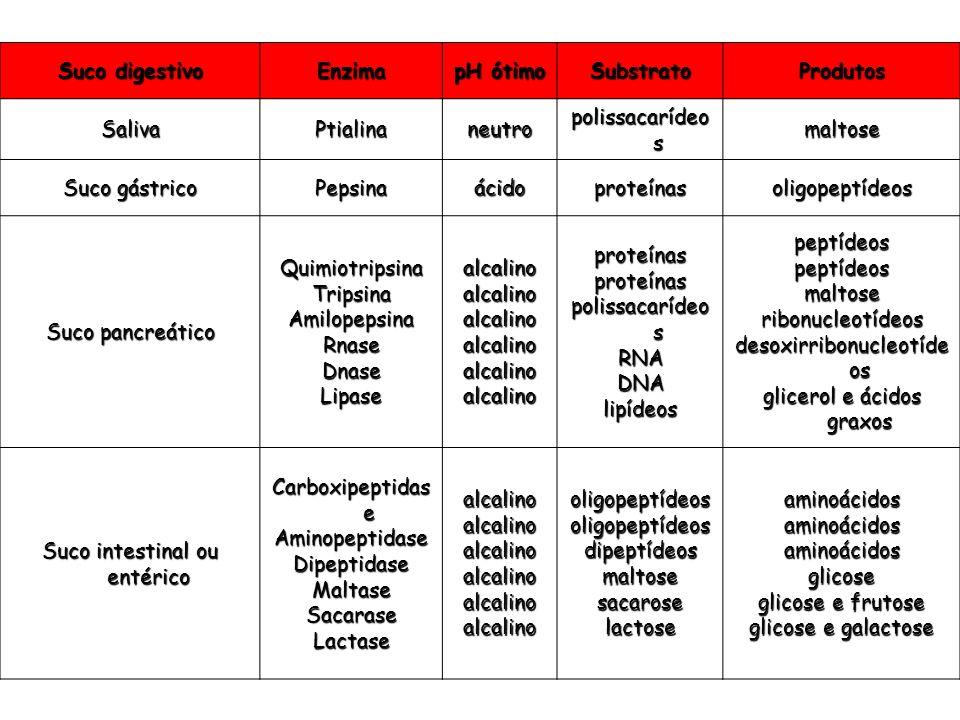 Suco digestivo Enzima pH ótimo SubstratoProdutos SalivaPtialinaneutro polissacarídeo s maltose Suco gástrico Pepsinaácidoproteínasoligopeptídeos Suco