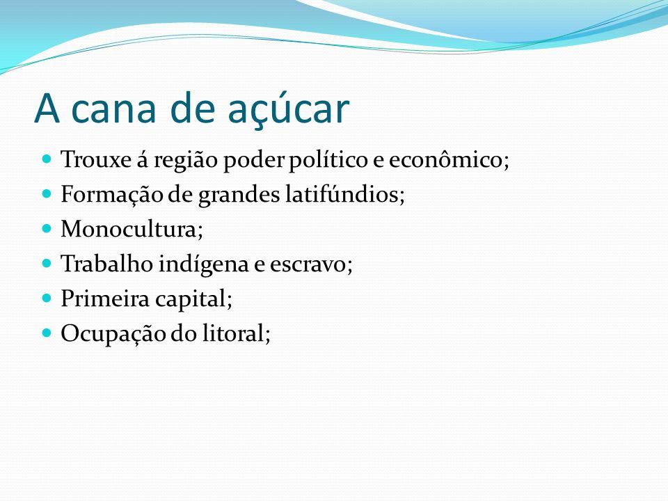 A cana de açúcar Trouxe á região poder político e econômico; Formação de grandes latifúndios; Monocultura; Trabalho indígena e escravo; Primeira capit
