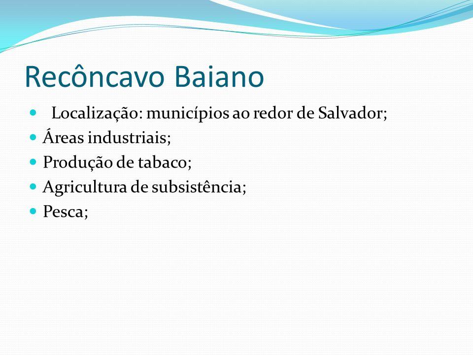 Recôncavo Baiano Localização: municípios ao redor de Salvador; Áreas industriais; Produção de tabaco; Agricultura de subsistência; Pesca;