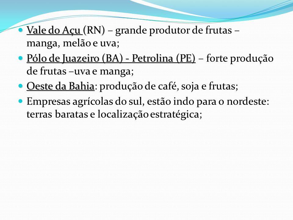 Vale do Açu (RN) Vale do Açu (RN) – grande produtor de frutas – manga, melão e uva; Pólo de Juazeiro (BA) - Petrolina (PE) Pólo de Juazeiro (BA) - Pet