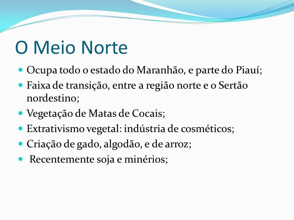 O Meio Norte Ocupa todo o estado do Maranhão, e parte do Piauí; Faixa de transição, entre a região norte e o Sertão nordestino; Vegetação de Matas de