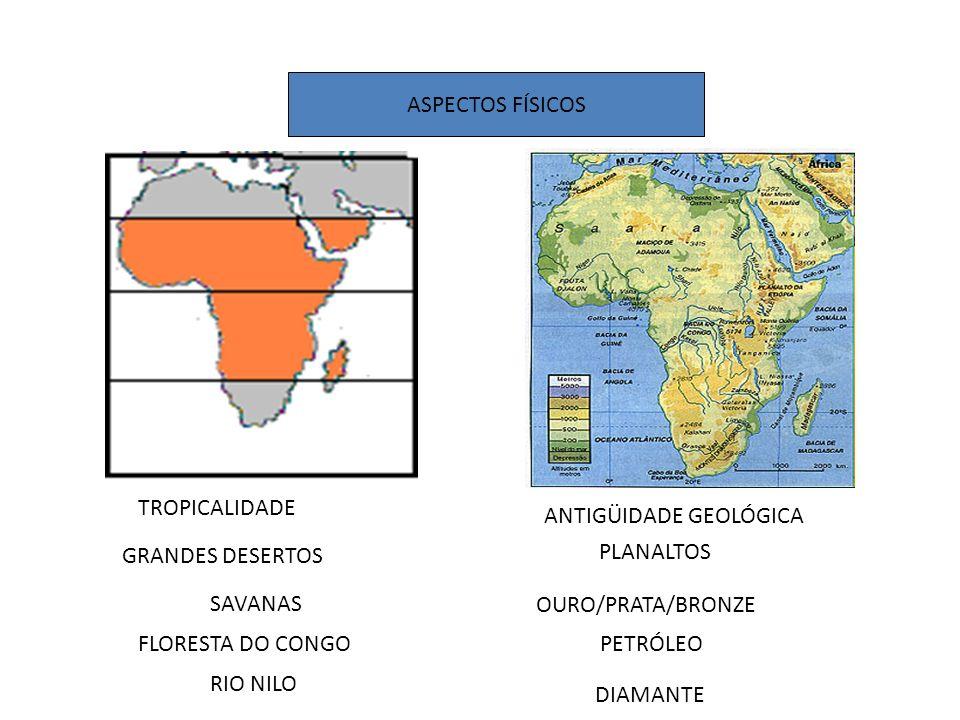 A situação da África junto a globalização O mais excluído dos continentes Características gerais: 1.Terceiro maior continente do mundo 2.Localizado no centro imaginário do planeta 3.75% do seu território encontra-se na zona tropical do globo 4.Possui 53 países e uma possessão (Saara Ocidental) 5.Existe cerca de 3 mil grupos étnicos e mais de mil línguas