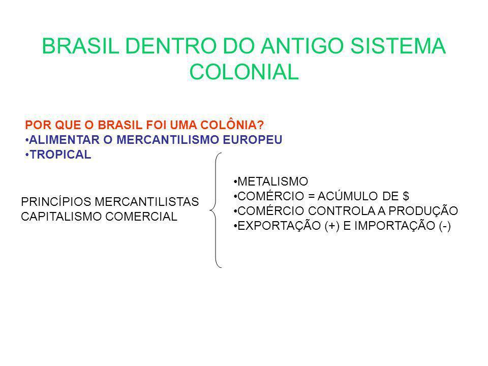 BRASIL DENTRO DO ANTIGO SISTEMA COLONIAL POR QUE O BRASIL FOI UMA COLÔNIA? ALIMENTAR O MERCANTILISMO EUROPEU TROPICAL PRINCÍPIOS MERCANTILISTAS CAPITA