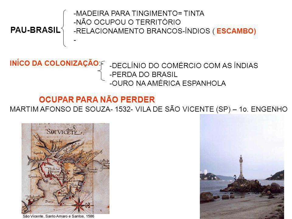 PAU-BRASIL -MADEIRA PARA TINGIMENTO= TINTA -NÃO OCUPOU O TERRITÓRIO -RELACIONAMENTO BRANCOS-ÍNDIOS ( ESCAMBO) - INÍCO DA COLONIZAÇÃO:- OCUPAR PARA NÃO PERDER MARTIM AFONSO DE SOUZA- 1532- VILA DE SÃO VICENTE (SP) – 1o.