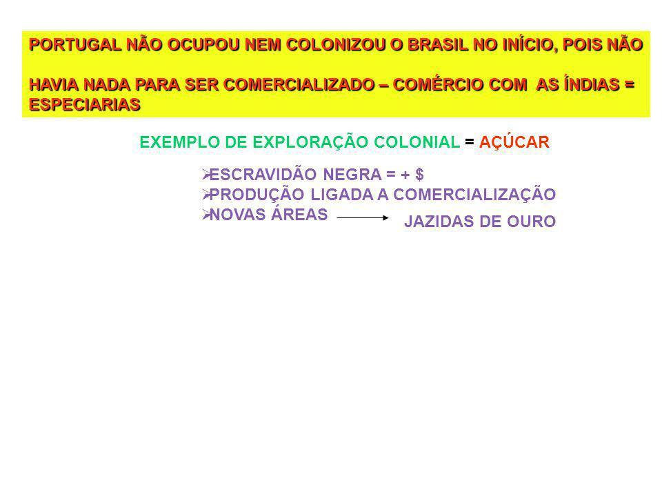PORTUGAL NÃO OCUPOU NEM COLONIZOU O BRASIL NO INÍCIO, POIS NÃO HAVIA NADA PARA SER COMERCIALIZADO – COMÉRCIO COM AS ÍNDIAS = ESPECIARIAS EXEMPLO DE EXPLORAÇÃO COLONIAL = AÇÚCAR ESCRAVIDÃO NEGRA = + $ PRODUÇÃO LIGADA A COMERCIALIZAÇÃO NOVAS ÁREAS JAZIDAS DE OURO