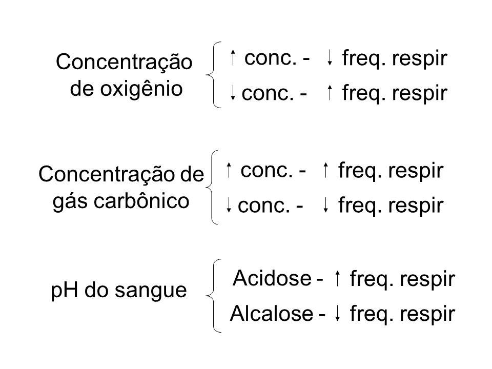 Concentração de oxigênio conc. - freq. respir conc. -freq. respir Concentração de gás carbônico conc. - freq. respir conc. -freq. respir pH do sangue