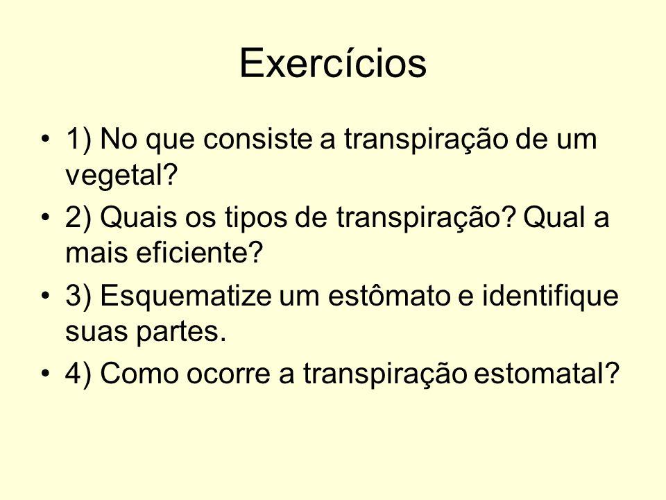 Exercícios 1) No que consiste a transpiração de um vegetal? 2) Quais os tipos de transpiração? Qual a mais eficiente? 3) Esquematize um estômato e ide