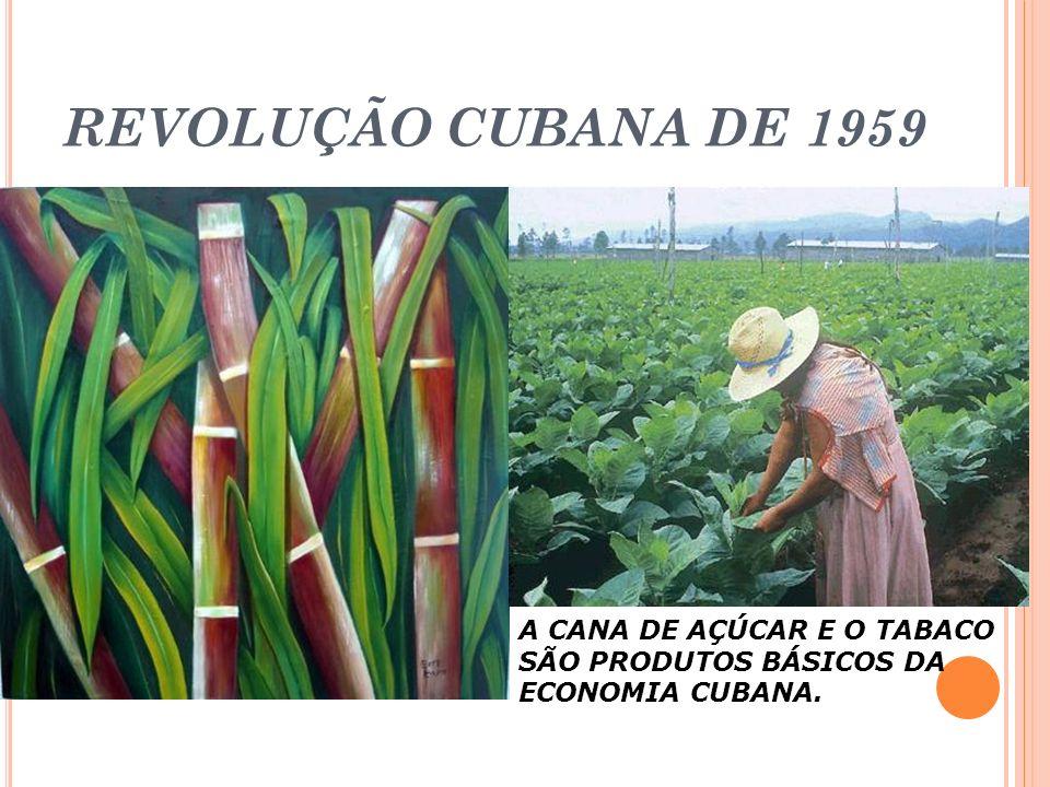REVOLUÇÃO CUBANA DE 1959 A CANA DE AÇÚCAR E O TABACO SÃO PRODUTOS BÁSICOS DA ECONOMIA CUBANA.