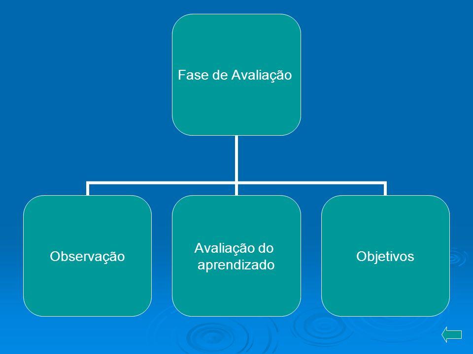 Fase de Avaliação Observação Avaliação do aprendizado Objetivos