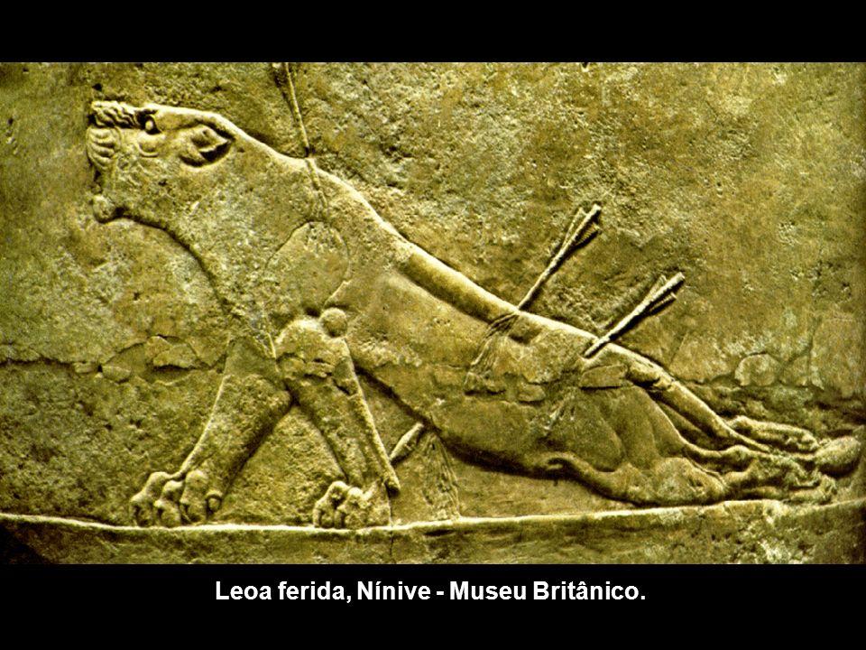 Leoa ferida, Nínive - Museu Britânico.