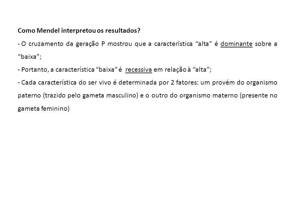 Como Mendel interpretou os resultados? - O cruzamento da geração P mostrou que a característica alta é dominante sobre a baixa; - Portanto, a caracter