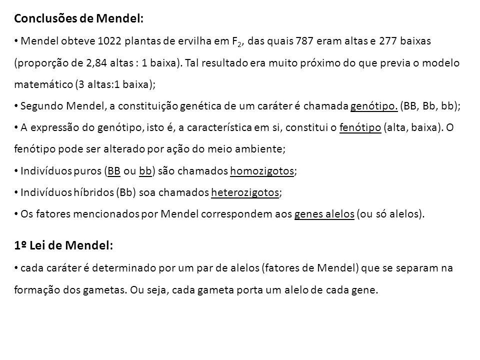Conclusões de Mendel: Mendel obteve 1022 plantas de ervilha em F 2, das quais 787 eram altas e 277 baixas (proporção de 2,84 altas : 1 baixa). Tal res
