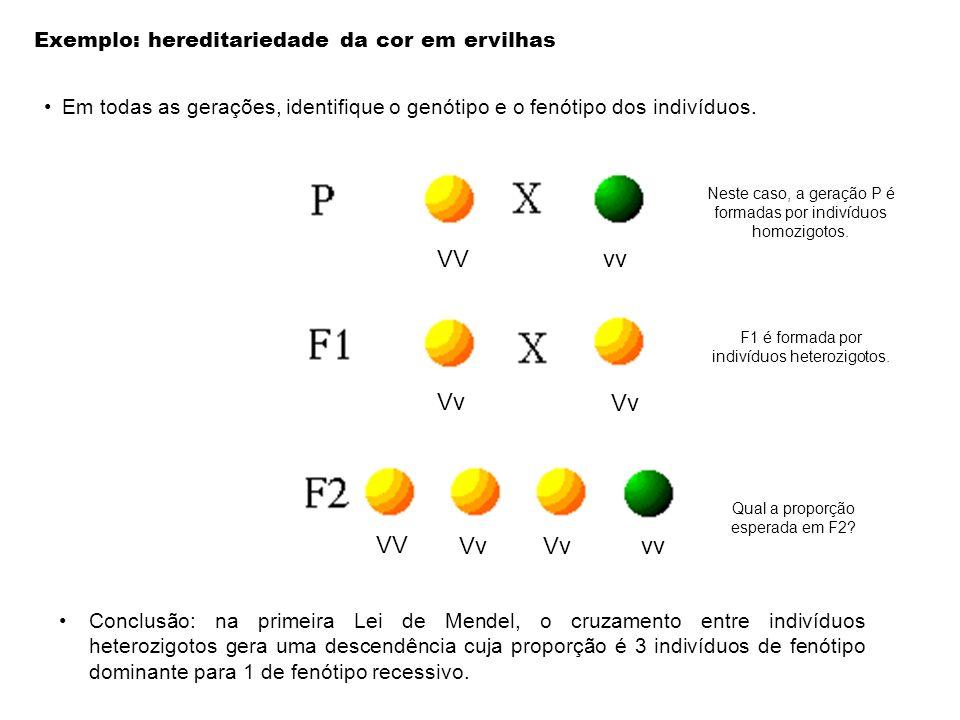 Exemplo: hereditariedade da cor em ervilhas Neste caso, a geração P é formadas por indivíduos heterozigotos ou homozigotos? F1 é formada por indivíduo