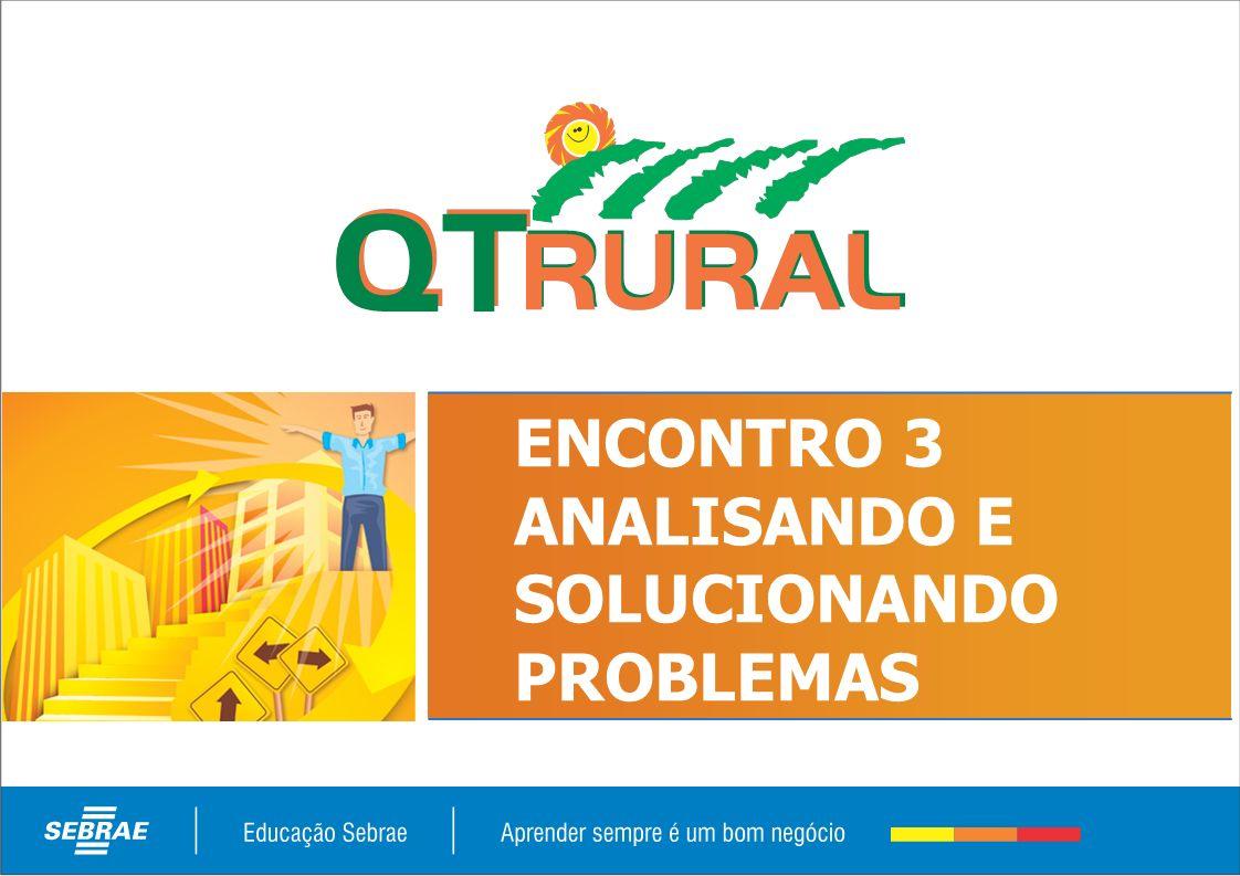 ENCONTRO 3 ANALISANDO E SOLUCIONANDO PROBLEMAS