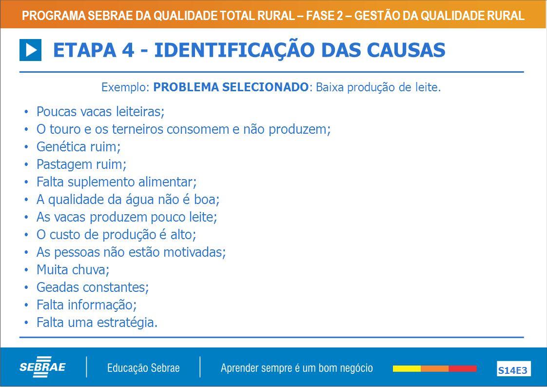 PROGRAMA SEBRAE DA QUALIDADE TOTAL RURAL – FASE 2 – GESTÃO DA QUALIDADE RURAL S14E3 ETAPA 4 - IDENTIFICAÇÃO DAS CAUSAS Exemplo: PROBLEMA SELECIONADO: Baixa produção de leite.
