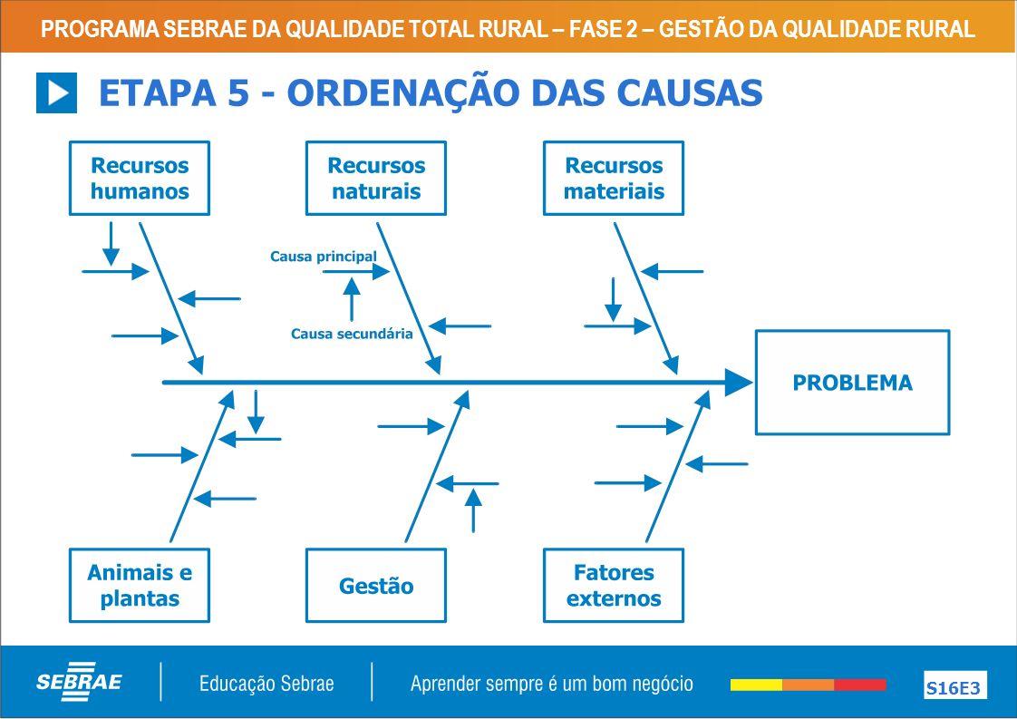 PROGRAMA SEBRAE DA QUALIDADE TOTAL RURAL – FASE 2 – GESTÃO DA QUALIDADE RURAL S16E3 ETAPA 5 - ORDENAÇÃO DAS CAUSAS