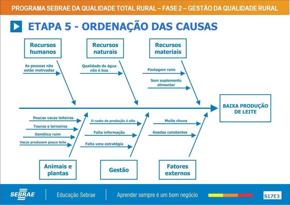 PROGRAMA SEBRAE DA QUALIDADE TOTAL RURAL – FASE 2 – GESTÃO DA QUALIDADE RURAL S17E3 ETAPA 5 - ORDENAÇÃO DAS CAUSAS
