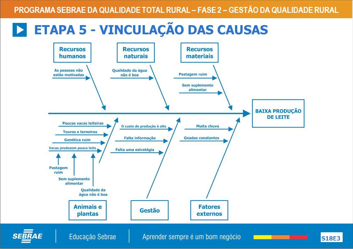 PROGRAMA SEBRAE DA QUALIDADE TOTAL RURAL – FASE 2 – GESTÃO DA QUALIDADE RURAL S18E3 ETAPA 5 - VINCULAÇÃO DAS CAUSAS