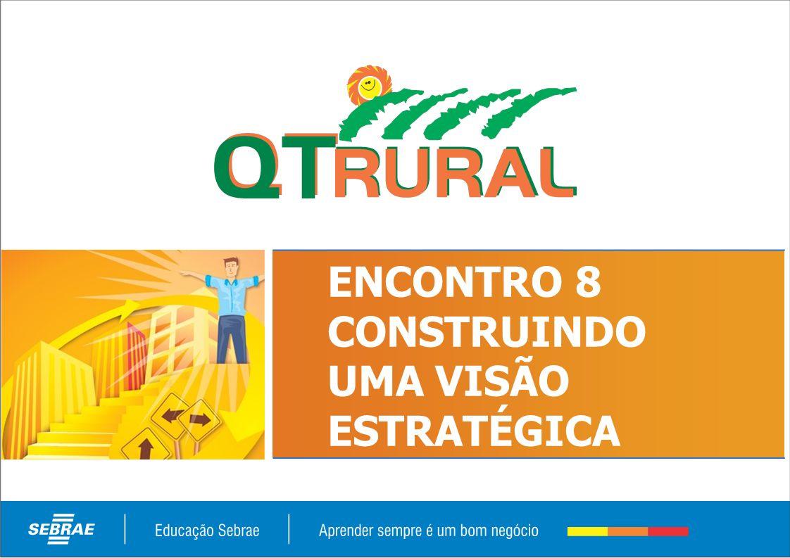 ENCONTRO 8 CONSTRUINDO UMA VISÃO ESTRATÉGICA