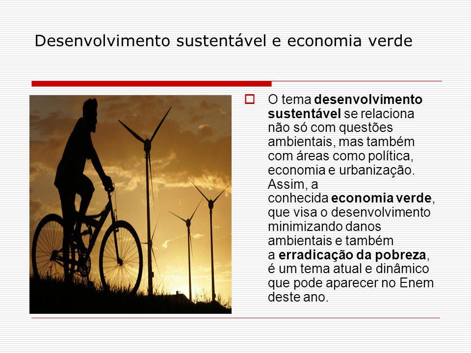 Desenvolvimento sustentável e economia verde O tema desenvolvimento sustentável se relaciona não só com questões ambientais, mas também com áreas como