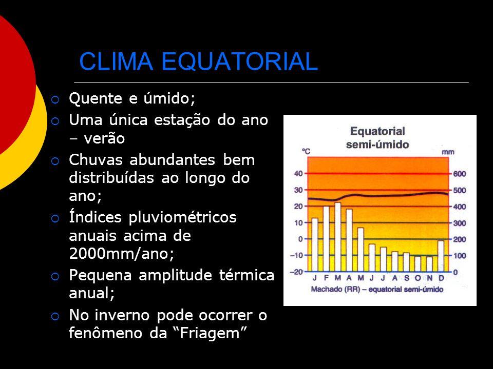 CLIMA EQUATORIAL Quente e úmido; Uma única estação do ano – verão Chuvas abundantes bem distribuídas ao longo do ano; Índices pluviométricos anuais ac