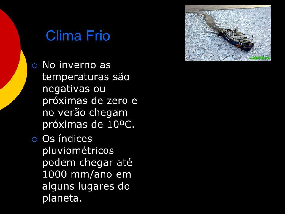 Clima Frio No inverno as temperaturas são negativas ou próximas de zero e no verão chegam próximas de 10ºC. Os índices pluviométricos podem chegar até