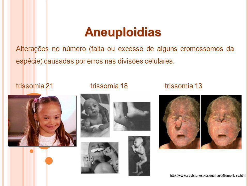 Aneuploidias http://www.assis.unesp.br/egalhard/Numericas.htm Alterações no número (falta ou excesso de alguns cromossomos da espécie) causadas por er