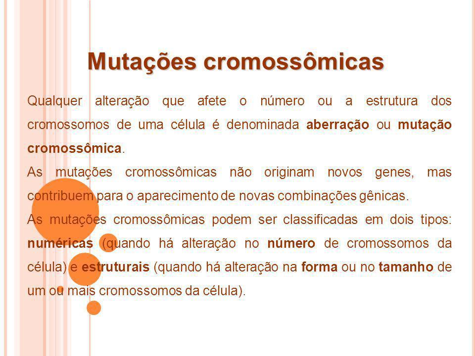Mutações cromossômicas Qualquer alteração que afete o número ou a estrutura dos cromossomos de uma célula é denominada aberração ou mutação cromossômi