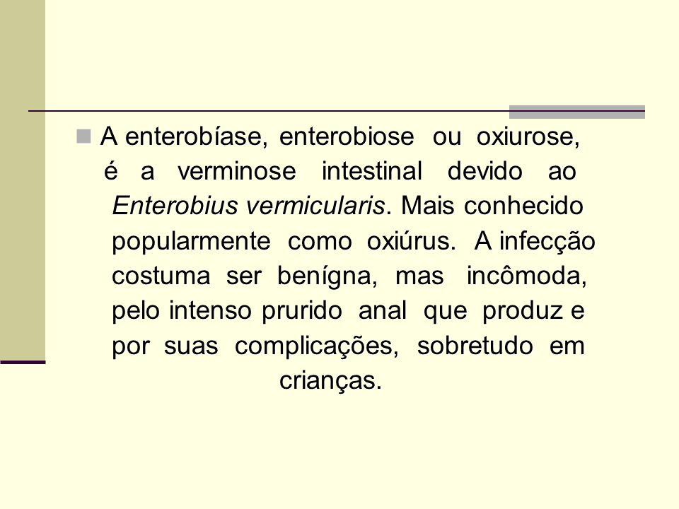 ENTEROBÍOSE (Oxyuríase) Causador: Enterobius vermiculares Sintomas: Diarréia Coceira na região Anal Contágio: Inalação dos Ovos