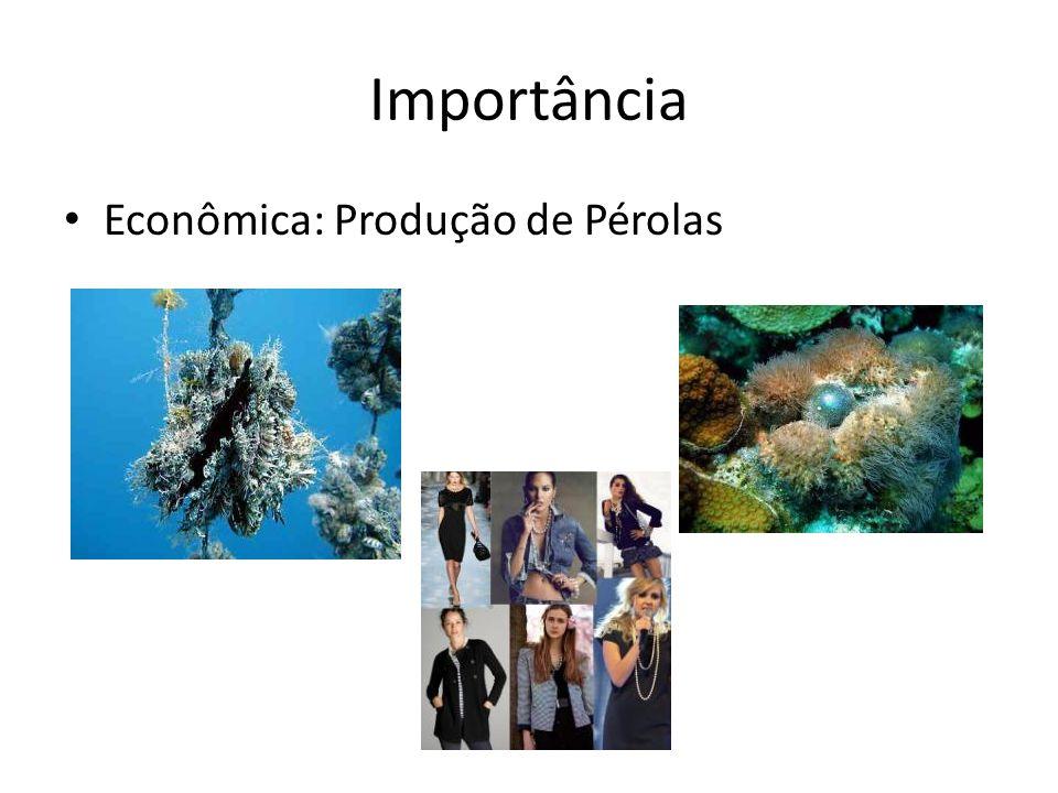 Importância Econômica: Produção de Pérolas